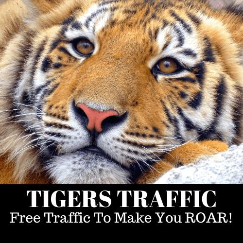 tiger traffic review 2