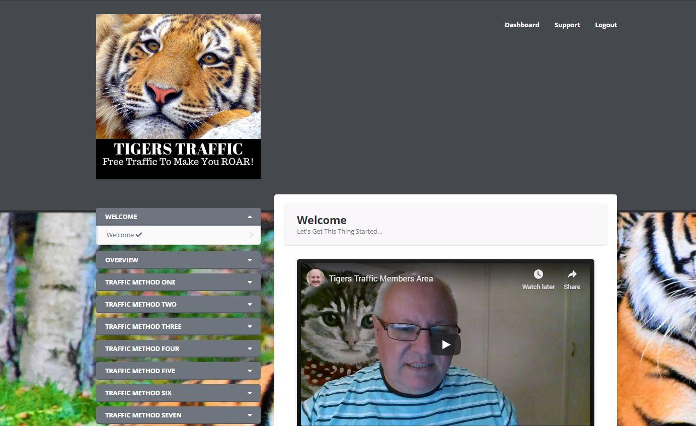 tiger traffic review 3